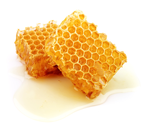 alpha-rho-rigid-plastic-boxes-honeycomb.png